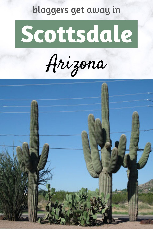 Blogging Away in Margarita-Ville