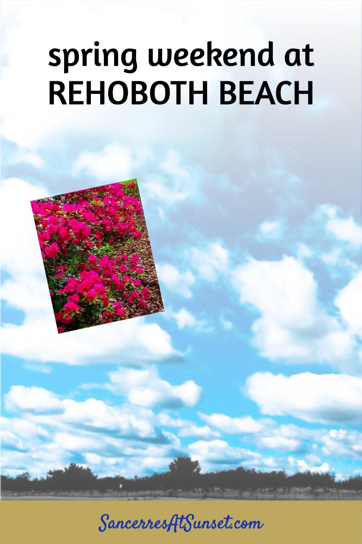 Springtime Fun at Rehoboth Beach