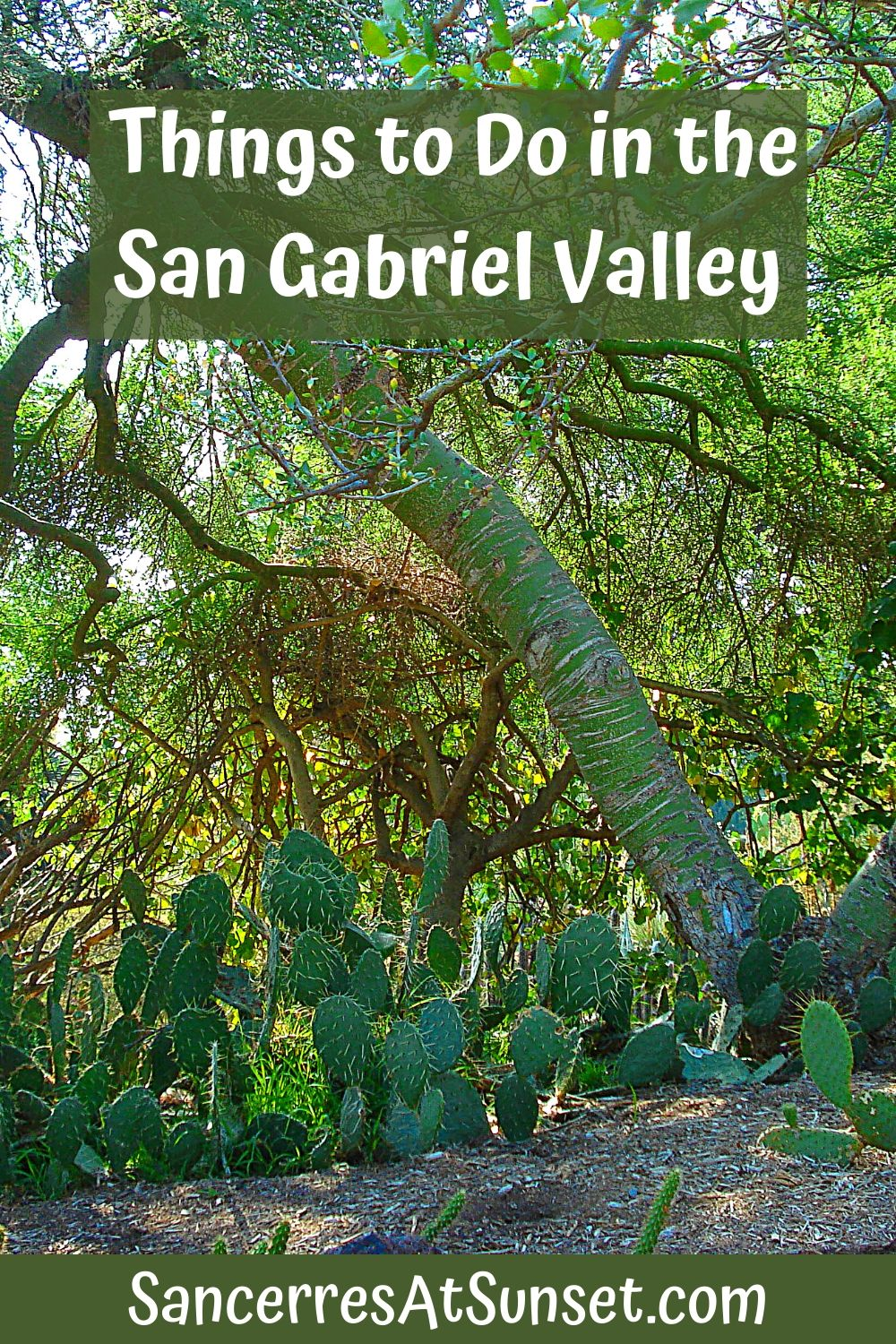 Things to Do in California\'s San Gabriel Valley